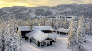 hytte-kvitfjell-dæhlihytta