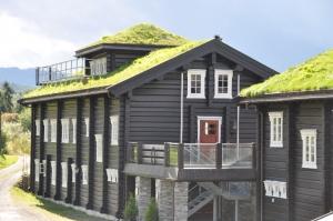 hytte-i-hafjell