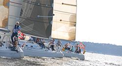 regatta i oslofjorden